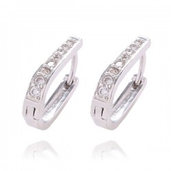 Silver Fantastic Zircon Pretty Hoop Earrings